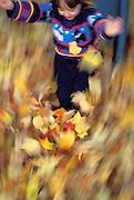 Child sliding through pile of leaves.