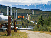 "The Trans Alaska Pipeline (or Alyeska Pipeline) crosses the Alaska Range and conveys crude oil 800 miles (1287 km) from Prudhoe Bay to Valdez, Alaska, USA. Heat Pipes conduct heat from the oil to aerial fins to avoid melting the permafrost. The 48-inch diameter (122 cm) pipeline is privately owned by the Alyeska Pipeline Service Company. The Trans Alaska Pipeline System (TAPS) includes ""The Pipeline"", several hundred miles of feeder pipelines, 11 pump stations, and the Valdez Marine Terminal. Environmental, legal, and political debates followed the discovery of oil at Prudhoe Bay in 1968. After the 1973 oil crisis caused a sharp rise in oil prices in the United States and made exploration of the Prudhoe Bay oil field economically feasible, legislation removed legal challenges and the pipeline was built 1974-1977. Extreme cold, permafrost, and difficult terrain challenged builders. Tens of thousands of workers flocked to Alaska, causing a boomtown atmosphere in Valdez, Fairbanks, and Anchorage. Oil began flowing in 1977. The pipeline delivered the oil spilled by the huge 1989 Exxon Valdez oil tanker disaster, which caused environmental damage expected to last 20-30 years in Prince William Sound."