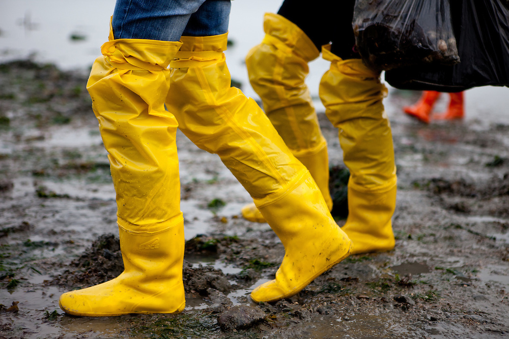 """Visitors with hop long rubber boots carrying bags of collected mussels and seaweet on the open """"Mysterious Sea Road"""" at Hoedong shore (Jindo island). Jindo is the 3rd biggest island in South Korea located in the South-West end of the country and famous for the """"Mysterious Sea Route"""" or """"Moses Miracle"""". Every spring thousands flock to the shores of Jindo to walk the mysterious route that stretches roughly three kilometers from Hoedong to the distant island of Modo. Materializing from the rise and fall of the tides, the divide can reach as wide as forty meters."""
