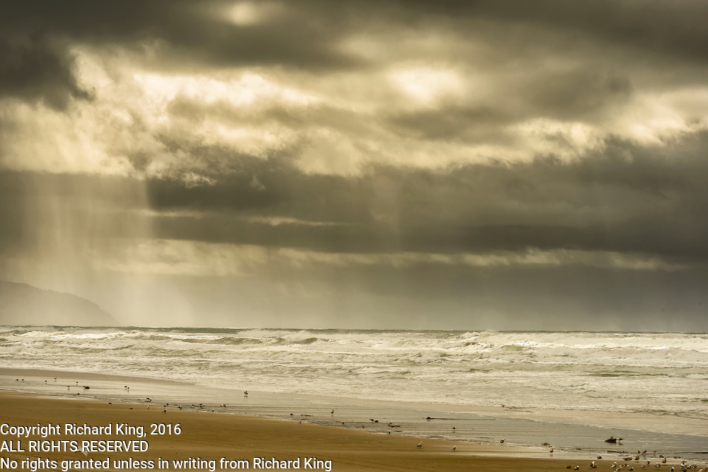 Seascape photographs of the Pacific Ocean from Cape Kiwanda, OR