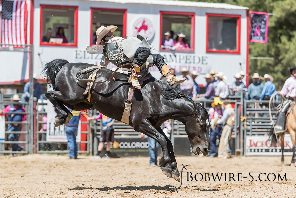 Evan Miller rides Summit Pro Rodeo's 80 Dawson Creek in the bareback riding during the first performance at the Elizabeth Stampede on Saturday, June 2, 2018.