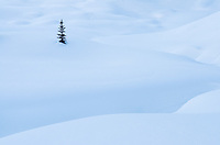 Snow pillows, Marriott Basin in winter, Coast Mountains British Columbia