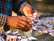 22 FEBRUARY 2017 - BAN LAEM, PETCHABURI, THAILAND:  A worker sets out fish to dry on a rack in Ban Laem, Thailand. The fish, a type of small sting ray, are dried in the sun for a day and then sold. They are used in fried dishes.      PHOTO BY JACK KURTZ