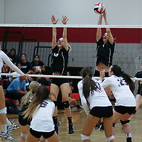 (Photograph by Bill Gerth for SVCN) Westmont #7 Melanie Broback and #13 Moya Wippich defend the net vs Piedmont Hills in a BVAL Girls Volleyball Game at Westmont High School, Campbell CA on 9/29/16.  (Piedmont Hills wins 3-0, 25-13, 25-14, 25-20)