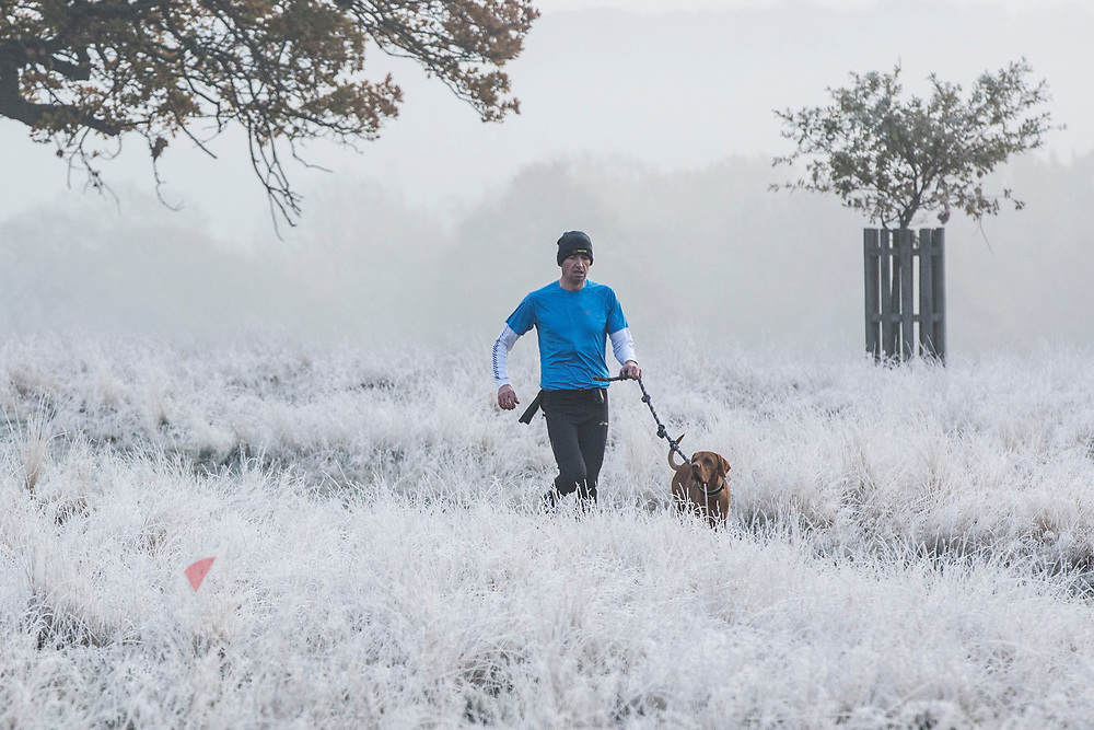 UNITED KINGDOM, London: 22 November 2018 A man and his dog make their way through a frosty Richmond Park during sunrise this morning. Temperatures sunk to zero degrees in the capital last night. Rick Findler  / Story Picture Agency
