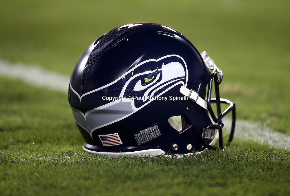 A Seattle Seahawks helmet lies on the grass before the NFL week 5 regular season football game against the Washington Redskins on Monday, Oct. 6, 2014 in Landover, Md. The Seahawks won the game 27-17. ©Paul Anthony Spinelli