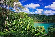 6212-1020 ~ Copyright: George H. H. Huey  ~ Belmont Bay. [remote beach] Northeast coast of the Island of Tobago. Trinidad and Tobago. Caribbean.