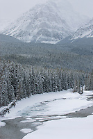 Bow River Valley in winter, Banff National Park Alberta Canada