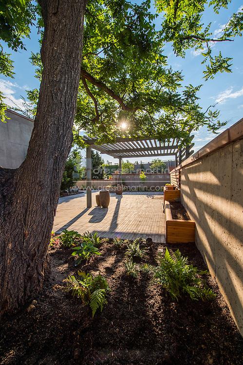 new sensory garden