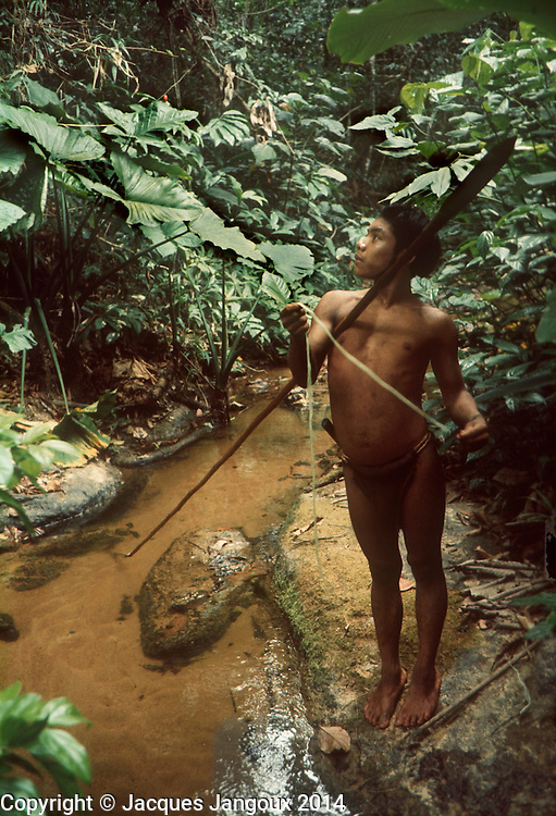 South America, Venezuela, Guiana Highlands. Hoti Indians: young hunter with spear.