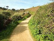 Footpath leading uphill into the centre, Island of Herm, Channel Islands, Great Britain