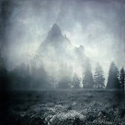 Moorland with row of trees in the mist and a mountain in the background. Manipulated photograph inspired by LOR novels.<br />