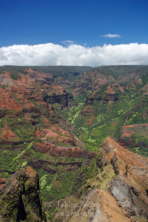 Midday view over Waimea Canyon, in Waimea Canyon State Park, Kauai, Hawaii.