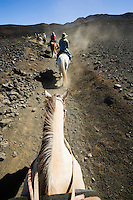 Line of horses and riders heading up a trail in Haleakala Crater, Haleakala National Park, Maui, Hawaii, USA
