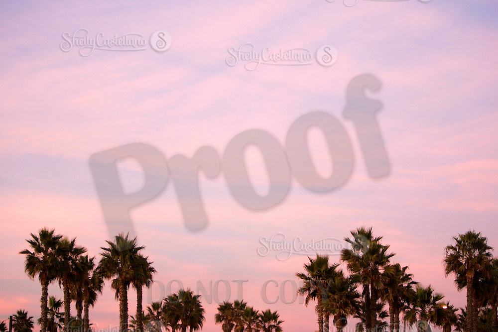 5 November 2006: Santa Ana winds produced a warm hot pink sunset during low tide during a fall winter day.  Graphic art sky with texture and colors.  Stock Art. Palm Trees.<br />