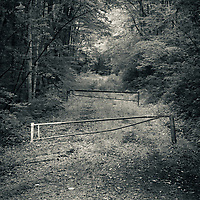 Access road, Balsam Mountain, NC