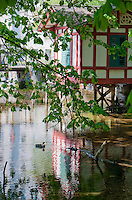 A beautiful mill house reflected in a stream in Wetzikon, Switzerland.