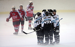 Players of Linz celebrate a goal at ice hockey match EHC Liwest BW Linz of Austria vs HC DR Briancon of France during Summer league R. Hiti,  on August 29, 2008 in Arena Bled, Bled, Slovenia.  (Photo by Vid Ponikvar / Sportal Images)