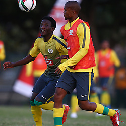 DURBAN, SOUTH AFRICA - Wednesday 10th June 2015 Action during The Bafana Bafana training session at  Moses Mabhida Stadium on Wednesday 10th June 2015 in Durban, South Africa<br /> Photo by Steve Haag