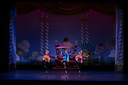 Dance Wisconsin performs Nutcracker Ballet at the UW Memorial Union in Shannon Hall in Madison, Wisconsin on December 15, 2018. <br /> <br /> Beth Skogen Photography - www.bethskogen.com