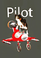 This charming fine art piece shows a cat leaping over an airplane. This is a pretty small airplane, so perhaps the cat simply can't fit. No matter what, we can easily imagine the delightful image of a cat piloting a plane. This cat seems to be looking ahead to something else, but they are nonetheless still aware of the airplane that is just beneath their feet. This piece combines a unique, almost vintage-style airplane with a shot of a beautiful housecat in motion. The end result is something that will delight absolutely everyone in your home. You can place this piece just about anywhere.