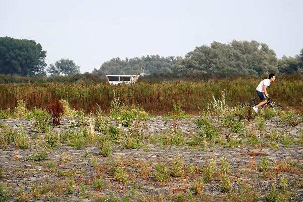Nederland, Nijmegen, 19-8-2018 Door de aanhoudende droogte staat het water in de rijn, ijssel en waal extreem laag . Schepen moeten minder lading innemen om niet te diep te komen . Hierdoor is het drukker in de smallere vaargeul. Door uitblijven van regenval in het stroomgebied van de rijn komt het record, laagterecord in zicht . Veel mensen vermaken zich op het strand wat door het lage water ontstaan is. De stuurhut van een binnenvaartschip komt net boven de drempel van de nevengeul, spiegelwaal, uit .Foto: Flip Franssen
