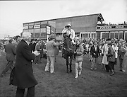 Irish Grand National At Fairyhouse.  (R54)..1987..20.04.1987..04.20.1987..20th April 1987..The Easter Racing Festival at Fairyhouse included the running of the Jameson sponsored Irish Grand National. Another featured race was the Jameson Gold Cup which was also run on Easter Monday...Picture shows 'Brittany Boy' ridden by Mr Tom Taffe,being led into the winners enclosure by the stablegirl. Wellwishers move in to congratulate the winner.