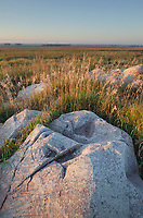Boulders of quartzite in Touch the Sky Prairie, southwest Minnesota
