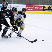 5th year defence man Austin Bourhis (8) of the Regina Cougars in action during the Men's Hockey Home Opener on October 6 at Co-operators arena. Credit: Arthur Ward/Arthur Images