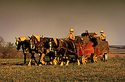 Image of Amish children working on a farm with horses pulling hay, Lancaster County, Pennsylvania, American Northeast