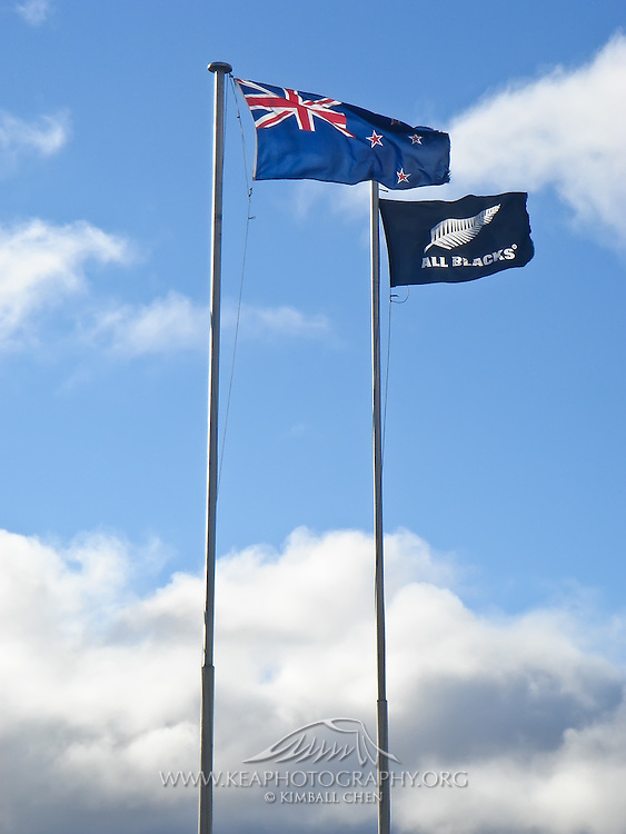 New Zealand and All Blacks flags