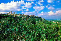 The medieval hilltop town of San Gimignano, surrounded by vineyards, Tuscany, Italy