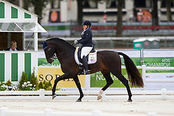 Susan Treabess, (USA), Kamiakin - Individual Test Grade IV Para Dressage - Alltech FEI World Equestrian Games™ 2014 - Normandy, France.<br /> © Hippo Foto Team - Jon Stroud <br /> 25/06/14