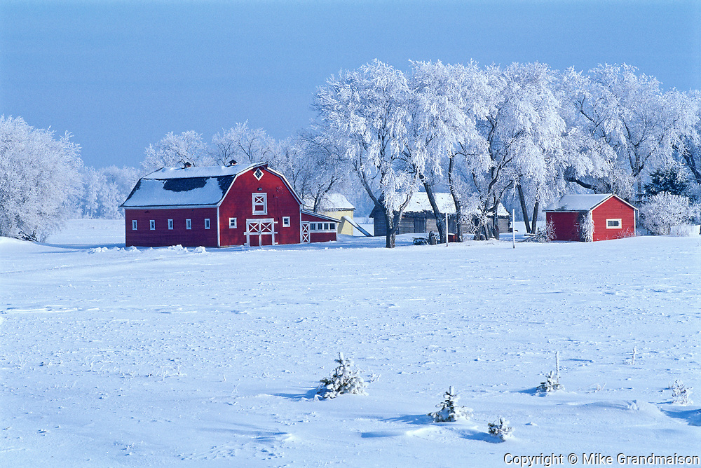 Red barn and hoarfrost<br />