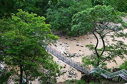 Bridge crosses muddy river, Rancho Capomo, Las Palmas, Puerto Vallarta, Jalisco, Mexico