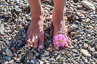 Natural feet earthing on beach stones.
