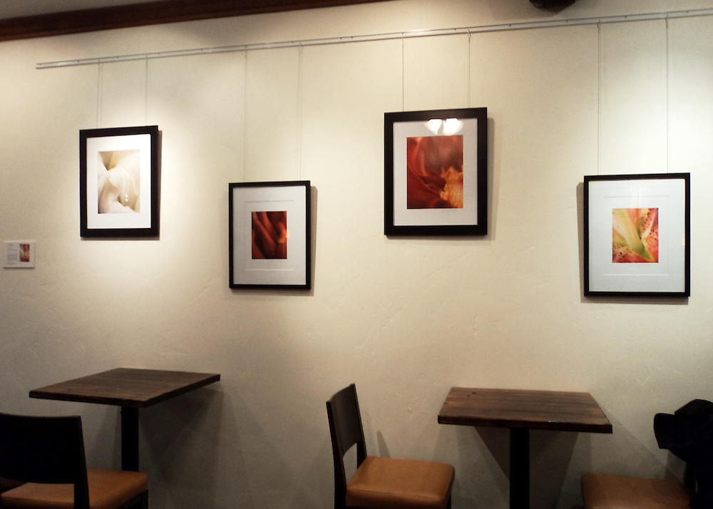 Example of 4 framed matted images on wall.