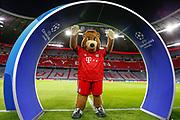 Bayern Munich mascot Berni inside the Allianz Arena before the Champions League match between Bayern Munich and Liverpool at the Allianz Arena, Munich, Germany, on 13 March 2019.