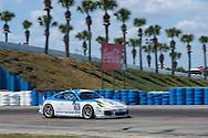 #19 Muehlner Motorsports America Porsche 911 GT America: Earl Bamber