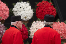 © licensed to London News Pictures. LONDON, UK  23/05/2011. Two Chelsea pensioners look at a floral display at the 2011 RHS Chelsea Flower Show. The show held each year in the grounds of the Royal Chelsea Hospital and organised by the Royal Horticultural society opens to the general public tomorrow and is already sold out. Please see special instructions for usage rates. Photo credit should read CLIFF HIDE/LNP