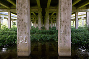 concrete pilings and vegetation underneath Interstate 59 at Sun Bun Road near Old U.S. Highway 51 in Manchac, Louisiana