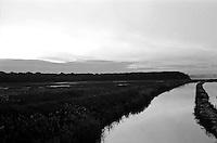 """Il mare piccolo Ë un mare artificiale che fu fatto realizzare da re Ferdinando I di Napoli nel 1481. Per questo Taranto Ë conosciuta come """"la citt? dei due mari"""", il Mare Grande e, appunto, il Mare Piccolo. Nel seno del Mare Piccolo inizia la coltivazione dei mitili (le cozze""""), favorita dalla presenza dei c.d. citri, ovvero """"sorgenti di acqua dolce che sboccano dalla crosta sottomarina [e che] rappresentano lo sbocco naturale di quei corsi d'acqua che in epoche assai remote hanno dato origine alle gravine in Puglia, e che scomparsi oggi dalla superficie scorrono in reti idrografiche sotterranee sfociando nel Mar Ionio e nel Mare Adriatico..Nella parte settentrionale di entrambi i seni del Mar Piccolo di Taranto, sono localizzate rispettivamente 20 e 14 sorgenti sottomarine, che apportano acqua dolce non potabile mescolata con acqua salmastra a contenuto variabile di sali"""" (fonte Wikipedia, http://it.wikipedia.org/wiki/Citri)"""