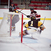 Women's Ice Hockey: University of Wisconsin-River Falls Falcons vs. Gustavus Adolphus College Gusties