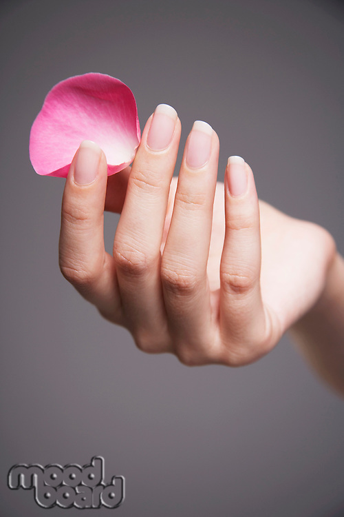 Woman holding single rose petal between finger and thumb close-up on hand