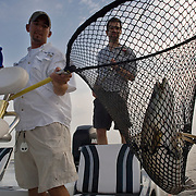 Chris Pike, left, a professional fishing guide, netted a trout caught by Seth Mnookin, right, during a weekend fishing trip south of New Orleans, LA.  Photo by Lori Waselchuk