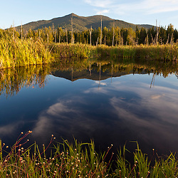 Cherry Mountain as seen from Pondicherry National Wildlife Refuge in New Hampshire;s White Mountains.