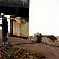 A chinese muslim walk in a muslim ranch, in the Dujia town, in northwest China's Ningxia Hui Autonomous Region, China, on Thursday, September. 11, 2008. The islam is the second biggest religion in China, where there are between 20 and 30 millions of muslims.