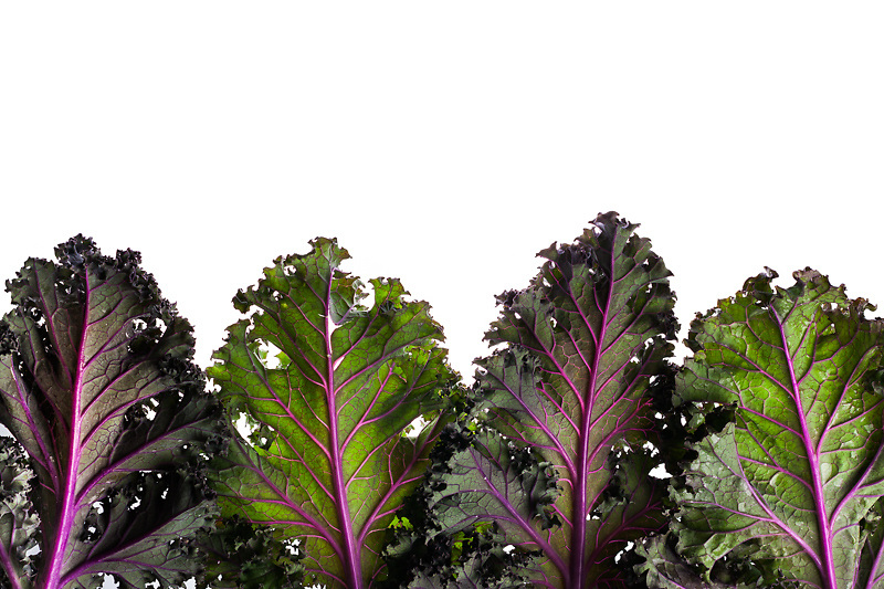 My love for textures led me to photograph some modern art food images as a contrast to my more rustic images. Set against a white background enhances the ruffled edges on these leaves and veins of purple and green kale