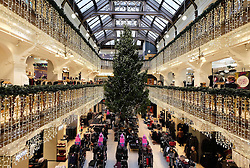 Jenner's Christmas Tree 2016, Friday 2nd December 2016<br /> <br /> (c) Alex Todd | Edinburgh Elite media