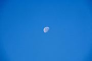 moon in a blue sky
